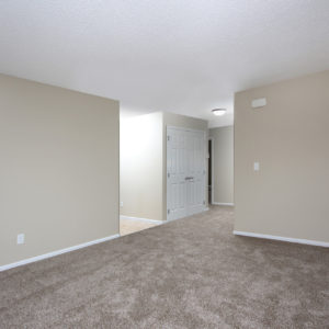 Entry & Living Area