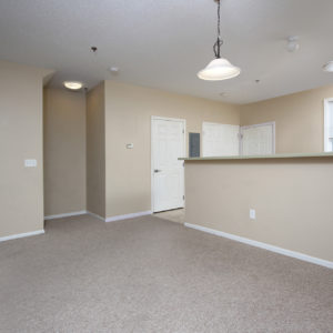 Entry, Kitchen & Living Area